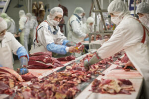 Processing & Preserving of Meat